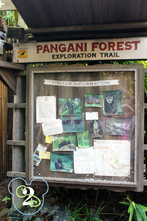 Pangani Forest Animal Kingdom